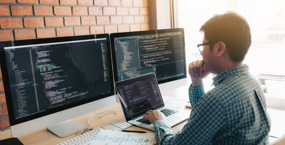 What Do Custom Web Developers Do?